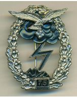 GROUND COMBAT BADGE OF THE AIR FORCE 75 ACTIONS