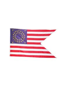 AMERICAN UNION CAVALRY GUIDON FLAG