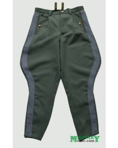 GERMAN SS GENERAL GRAY STRIPE BREECHES