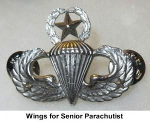 AMERICAN PARATROOPER JUMP WINGS BADGE ARMY STERLING WW2